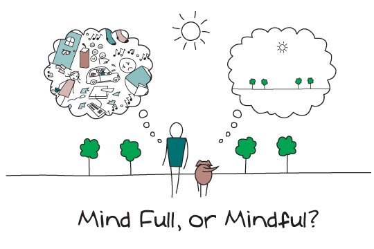 Mindfulness Blog Mindful or Mind Full